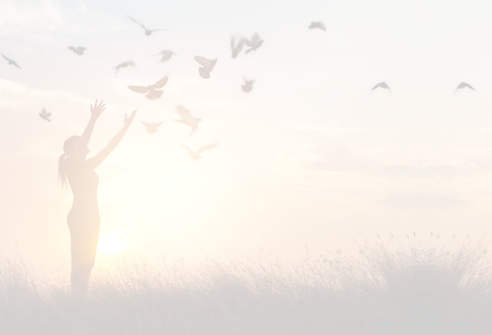 a picture of a woman in a sunset with birds